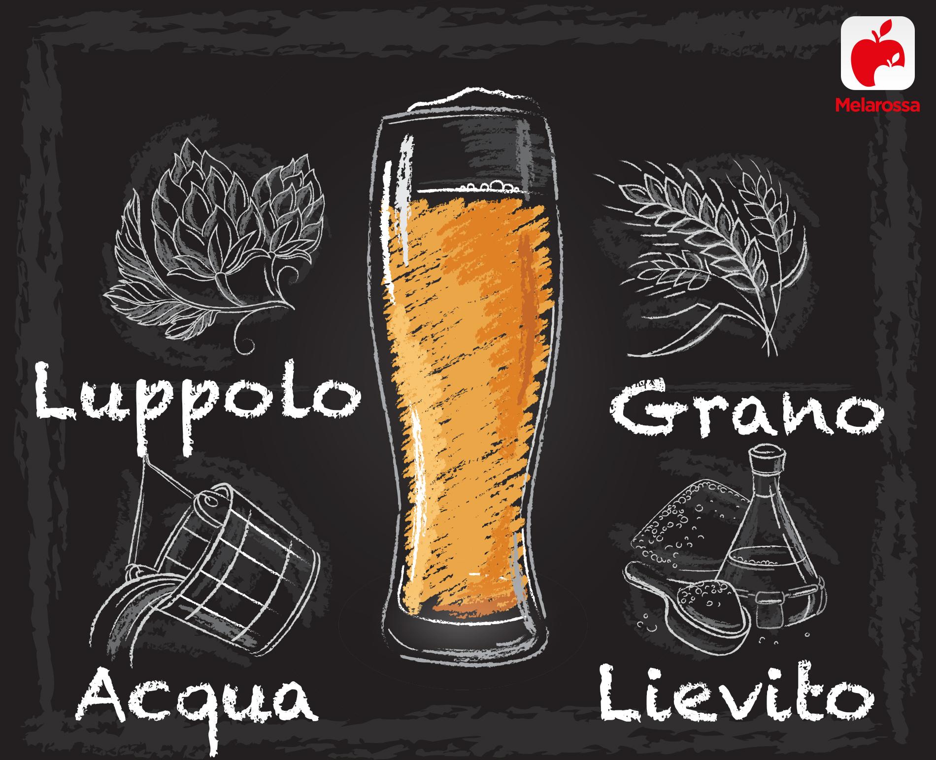 lieviti nella birra