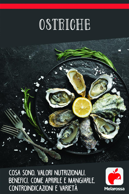 ostriche: cosa sono, valori nutrizionali, benefici, come aprirle e mangiarle