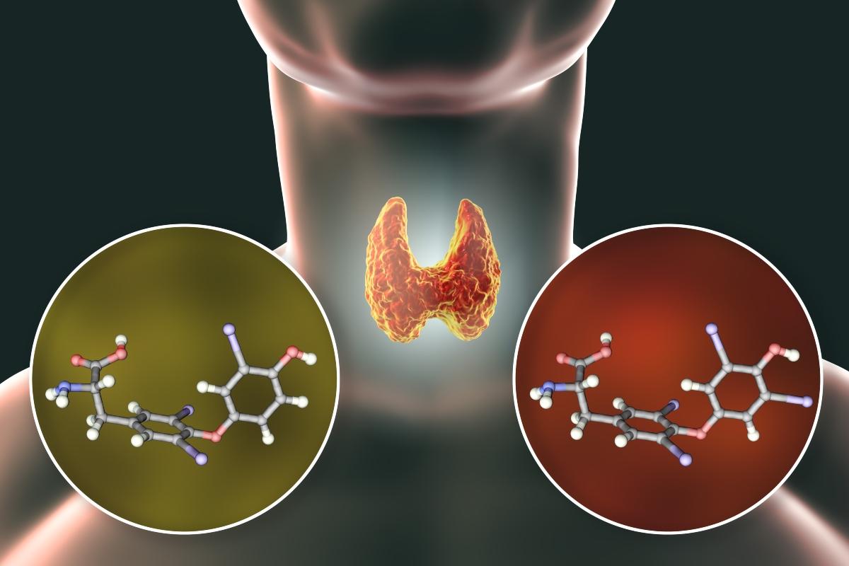 tiroide: che cos'è