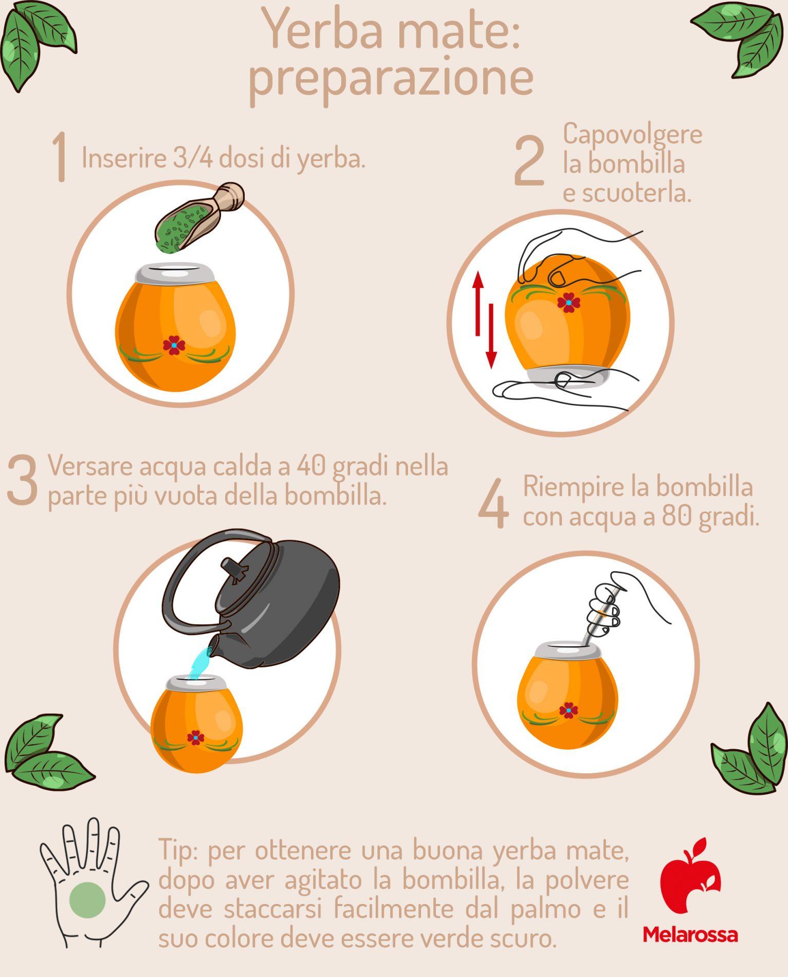yerba mate: come si prepara con bombilla