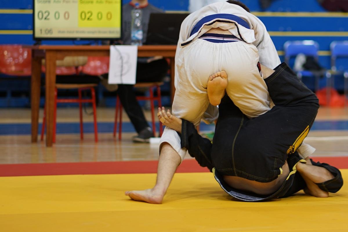 Ju Jitsu brasiliano