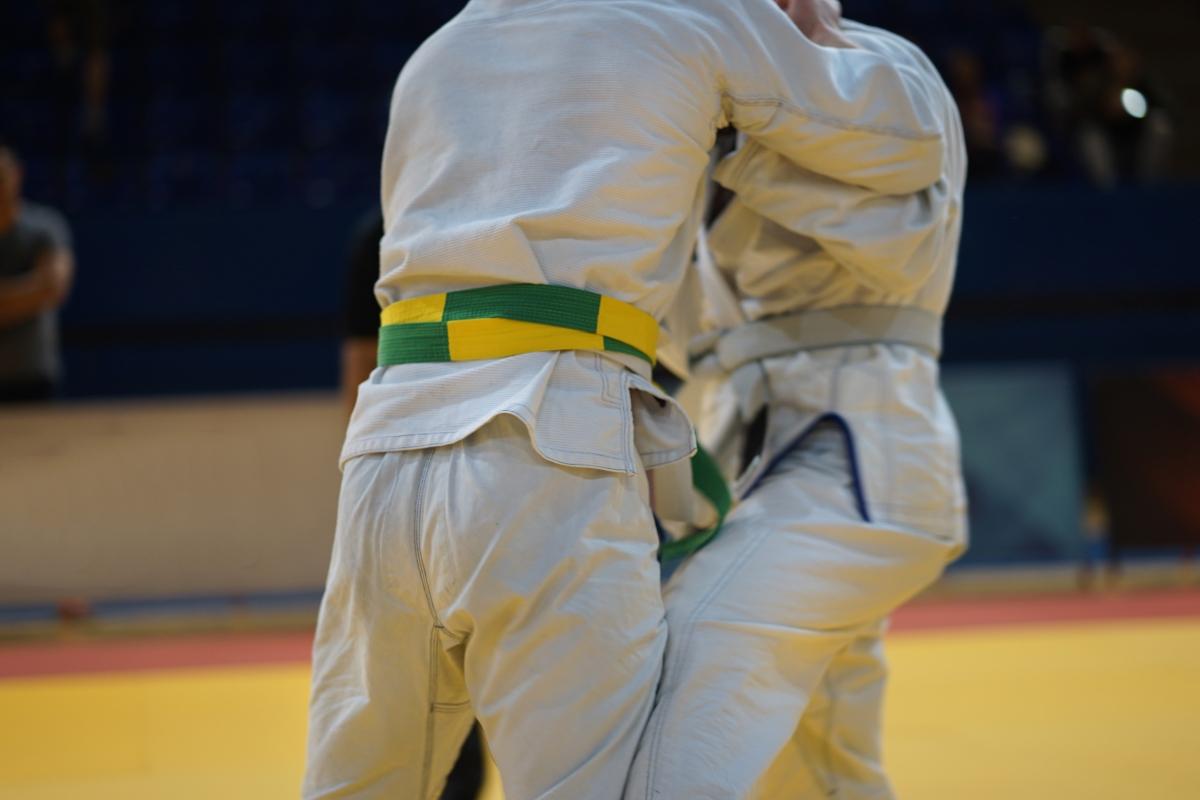 Ji Jitsu in Italia