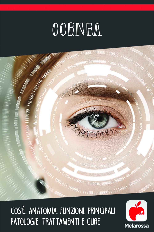 cornea: cos'è, anatomia, funzioni, principali patologie, trattamenti e cure
