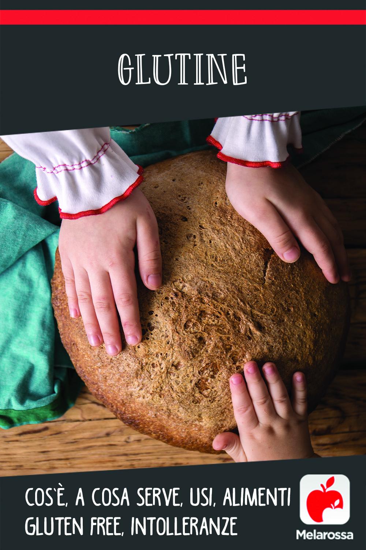 glutine : cos'è , a cosa serve, usi, alimenti con e senza la molecola, intolleranza