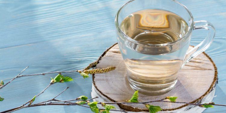 linfa di betulla: cos'è, a cosa serve, azioni, come usarlo, controinidicazioni