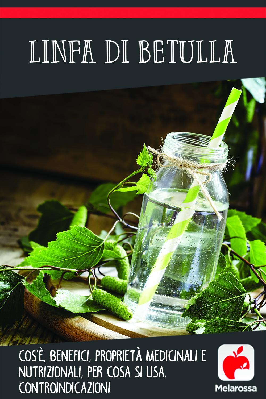 linfa di betulla: cos'è, proprietà, benefici, come usarlo