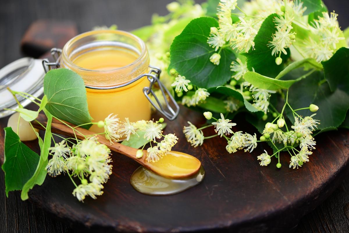 miele di tiglio: cos'è e proprietà