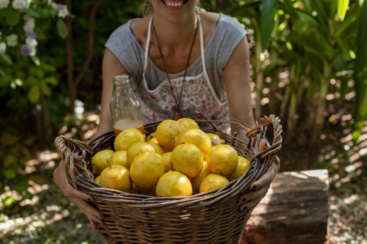 Qual'è la migliore qualità di limoni