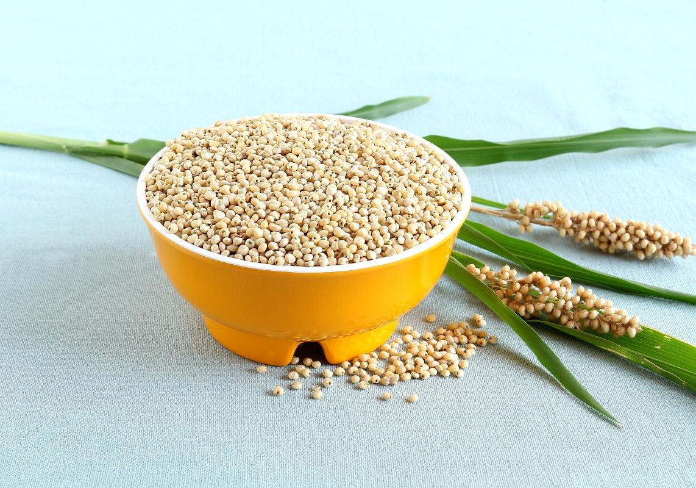 sorgo: cereale senza glutine, benefici e ricette