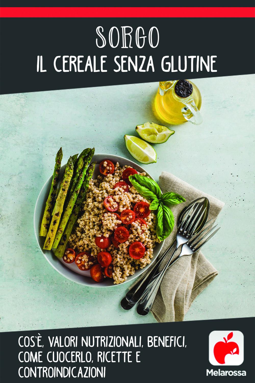 sorgo: cos'è, valori nutrizionali, benefici, come cuocerlo, ricette e controindicazioni