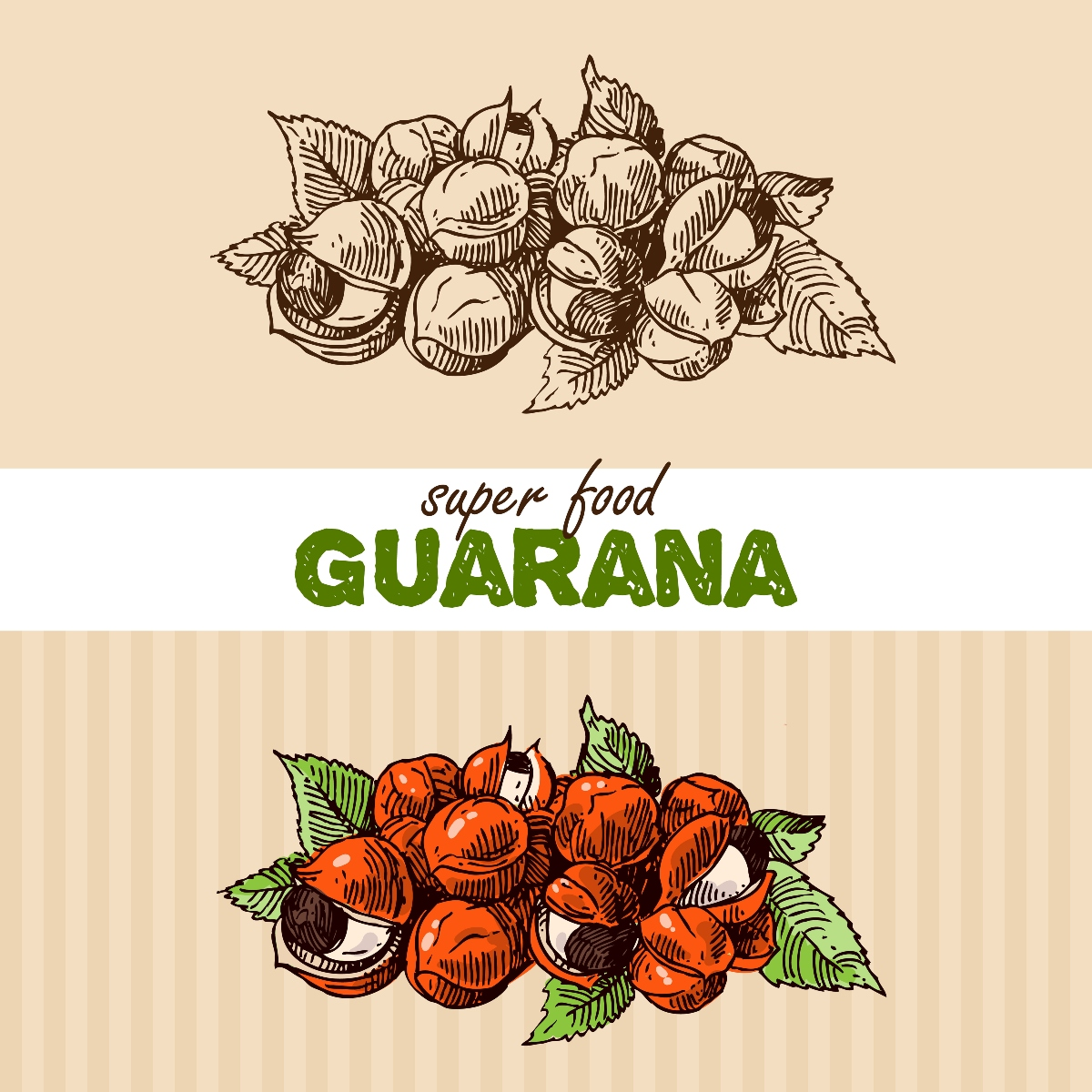 Il guaranà è un superfood