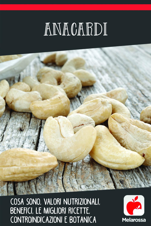 anacardi: cosa sono, valori nutrizionali, benefici e le migliori ricette