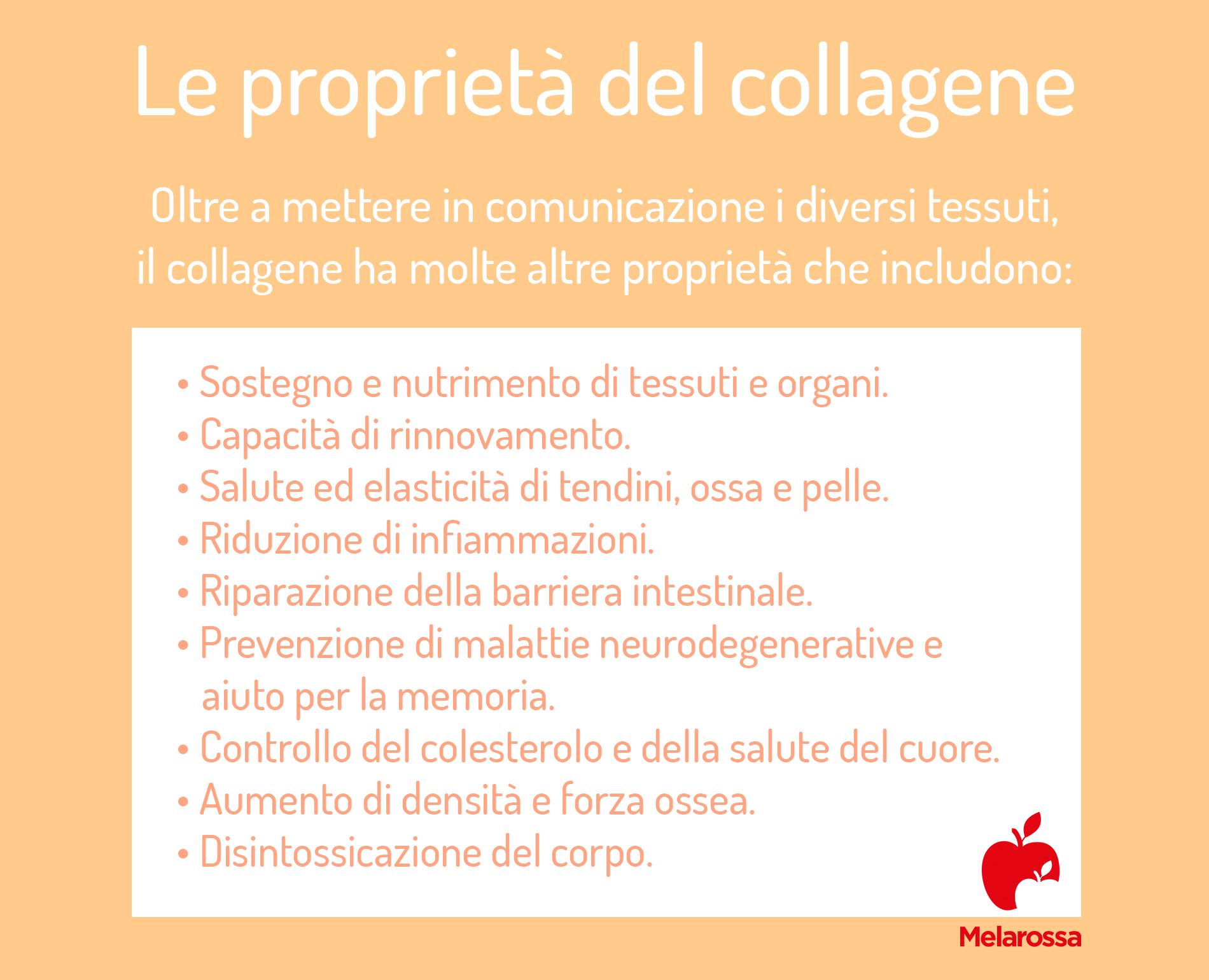 le proprietà del collagene