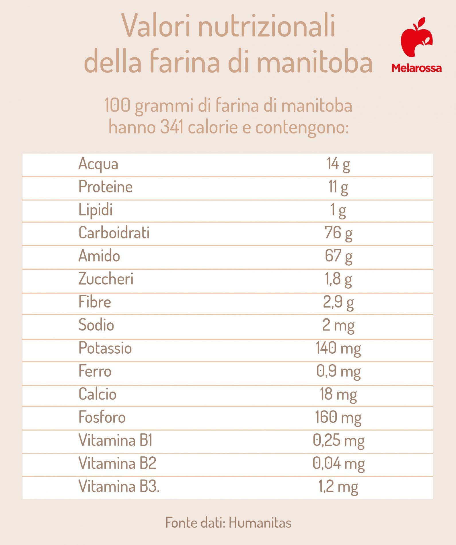 Farina di manitoba: valori nutrizionali