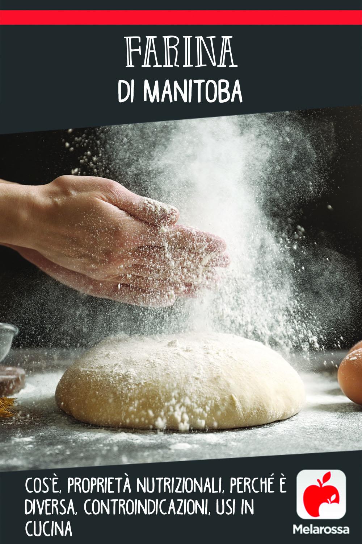 Farina di manitoba: cos'è, valori nutrizionali, perché è diversa, controindicazioni, usi e ricette