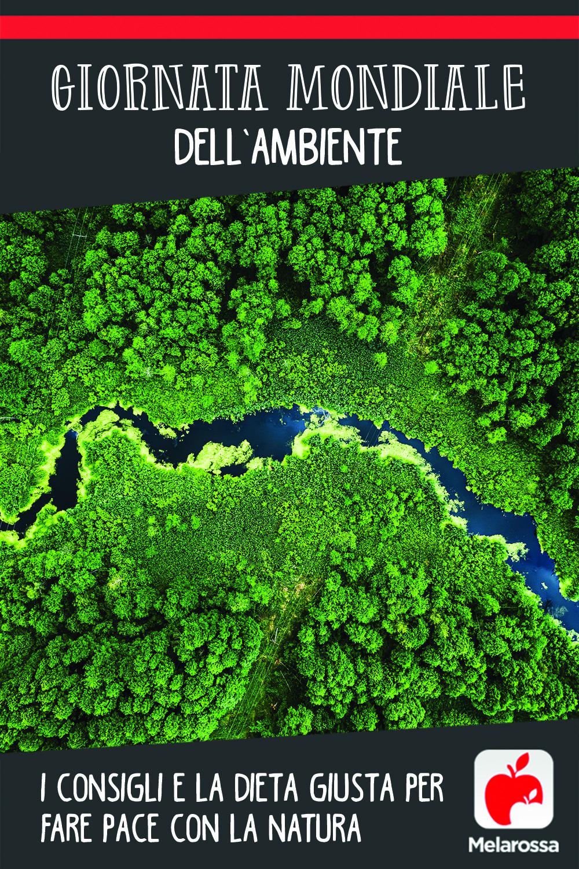 Giornata mondiale dell'Ambiente: i consigli e la dieta giusta per fare pace con la natura