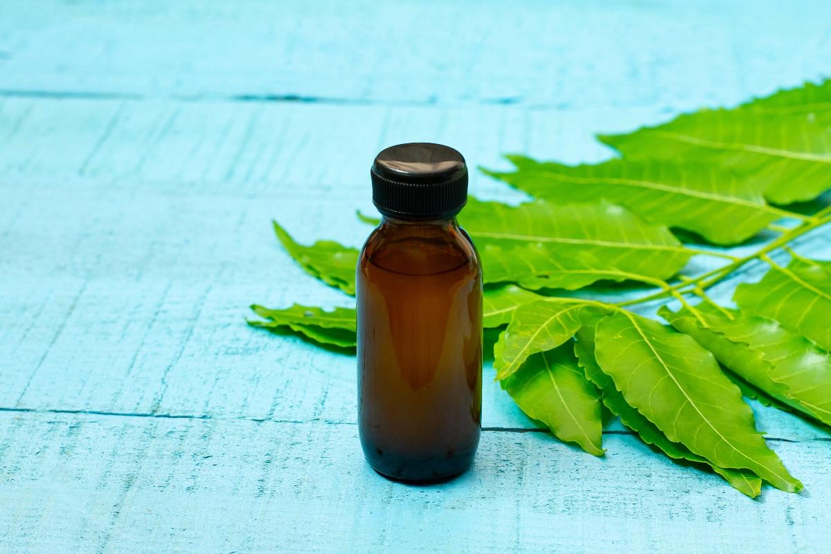 olio di neem: benefici