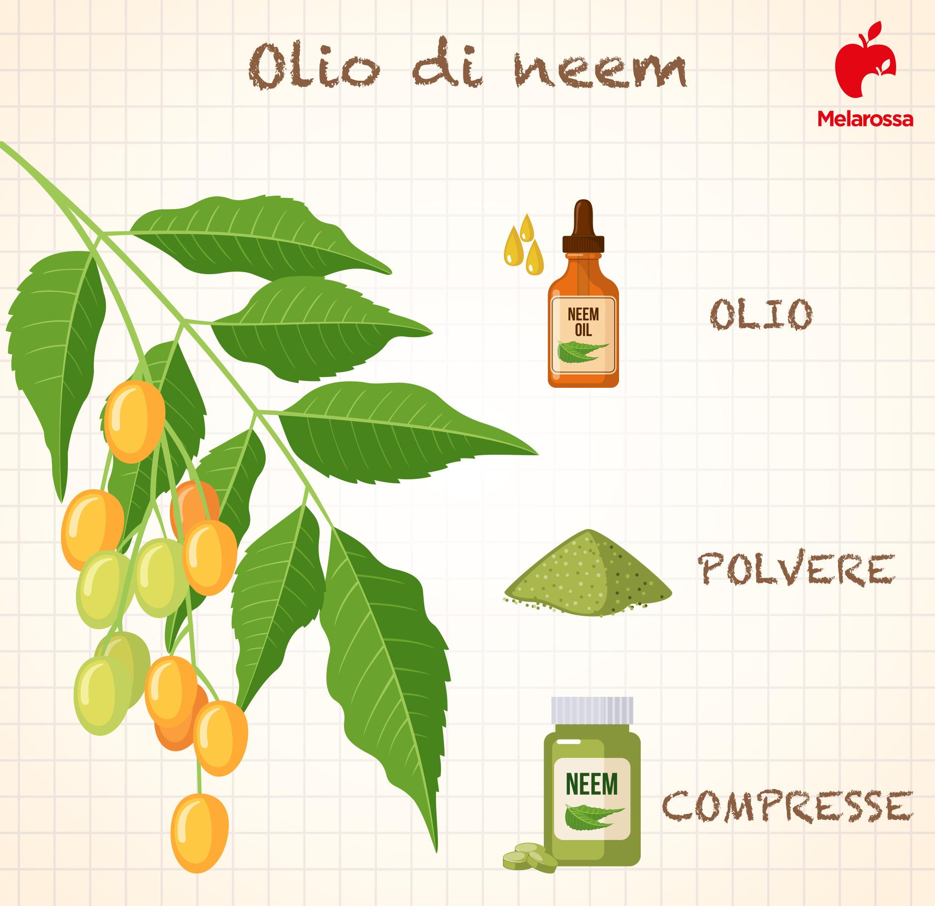 olio di neem in polvere o compresse