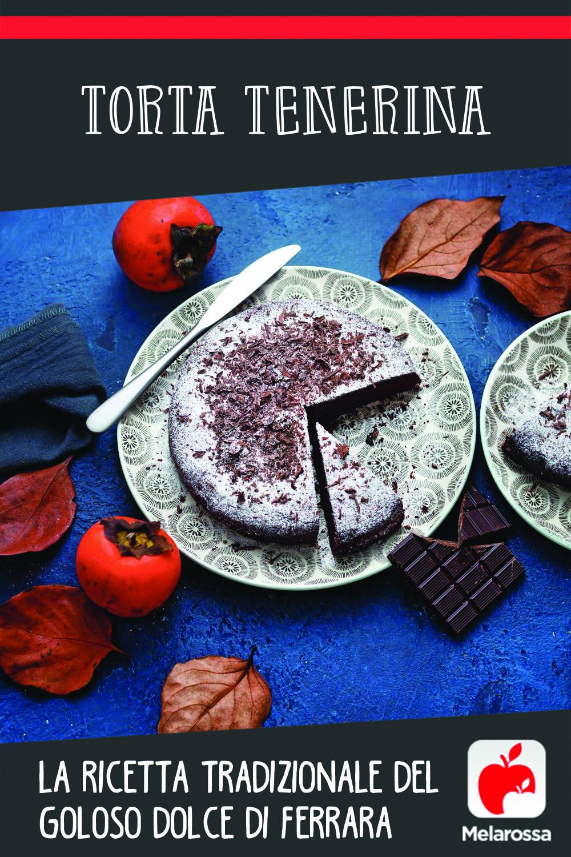 Torta tenerina: la ricetta tradizionale del dolce di Ferrara