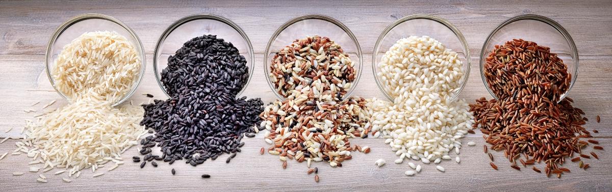 Varietà del riso