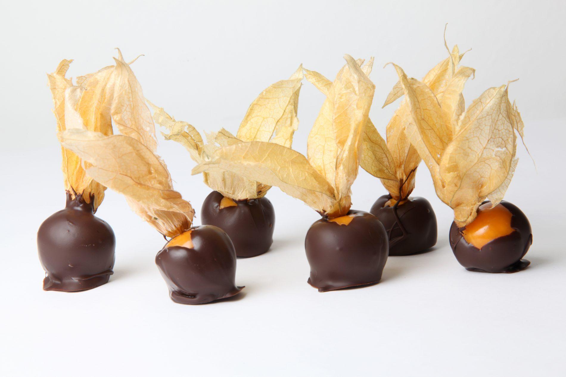 alchechengi ricoperti di cioccolato: la ricette