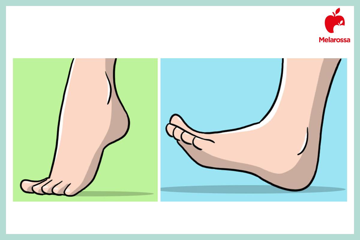 circolazioni sanguigna: esercizi caviglie