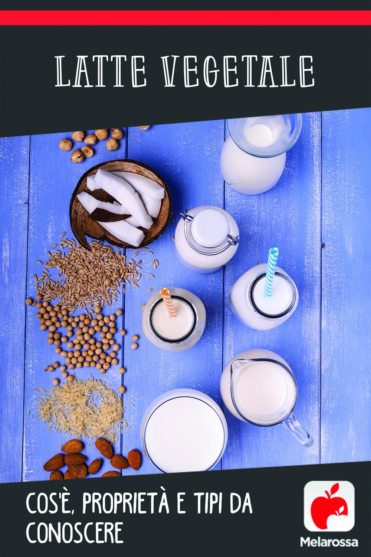 latte vegetale: tipi e proprietà
