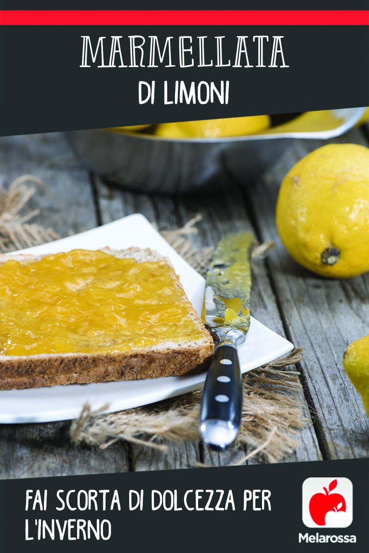 Marmellata di limoni: fai scorta di dolcezza per l'inverno