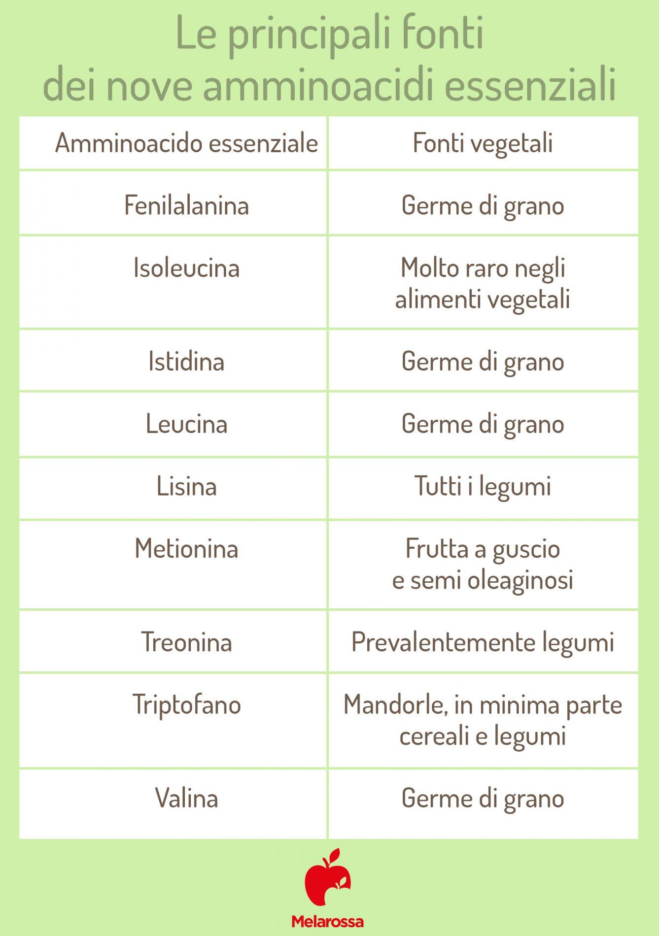 proteine vegetali e amminoacidi