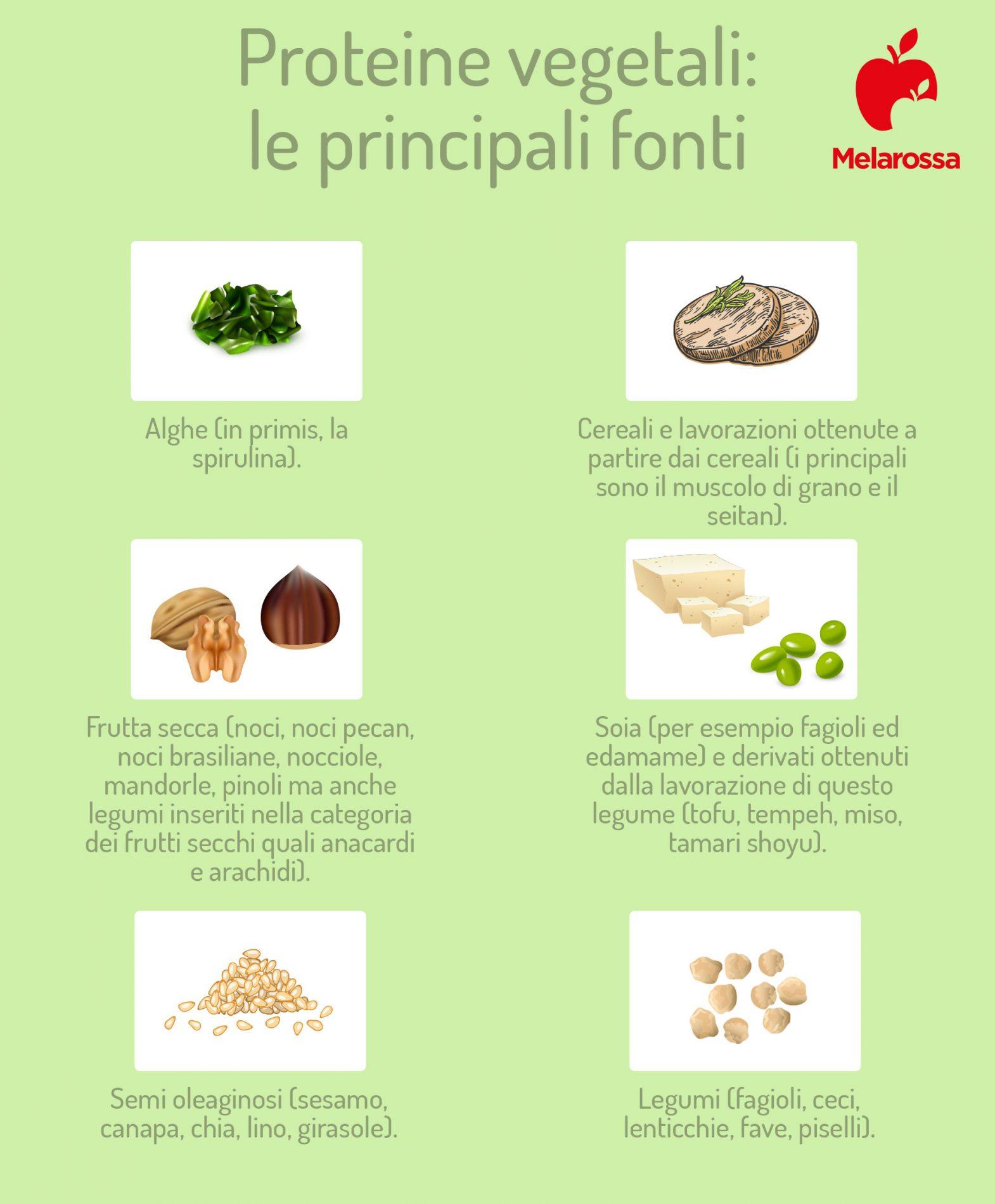 principali fonti di proteine vegetali
