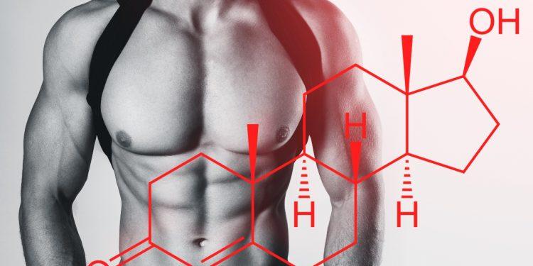 Testosterone: cos'è, ruolo, valori normali, alti e bassi, quando assumere integratori