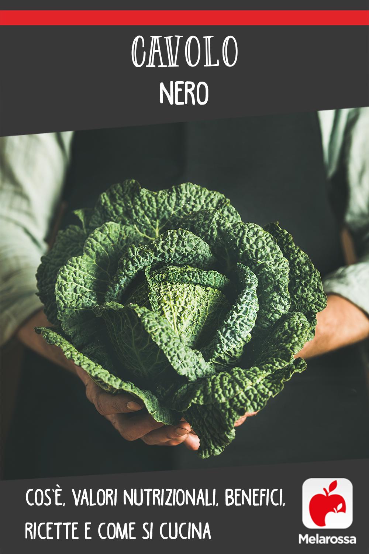 cavolo nero: cos'è, benefici e le migliori ricette