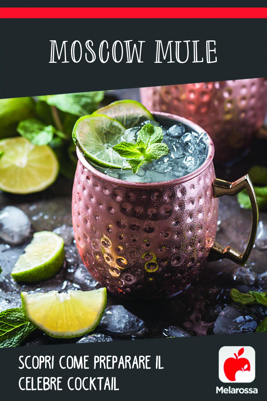 Moscow mule: scopri come preparare il celebre cocktail