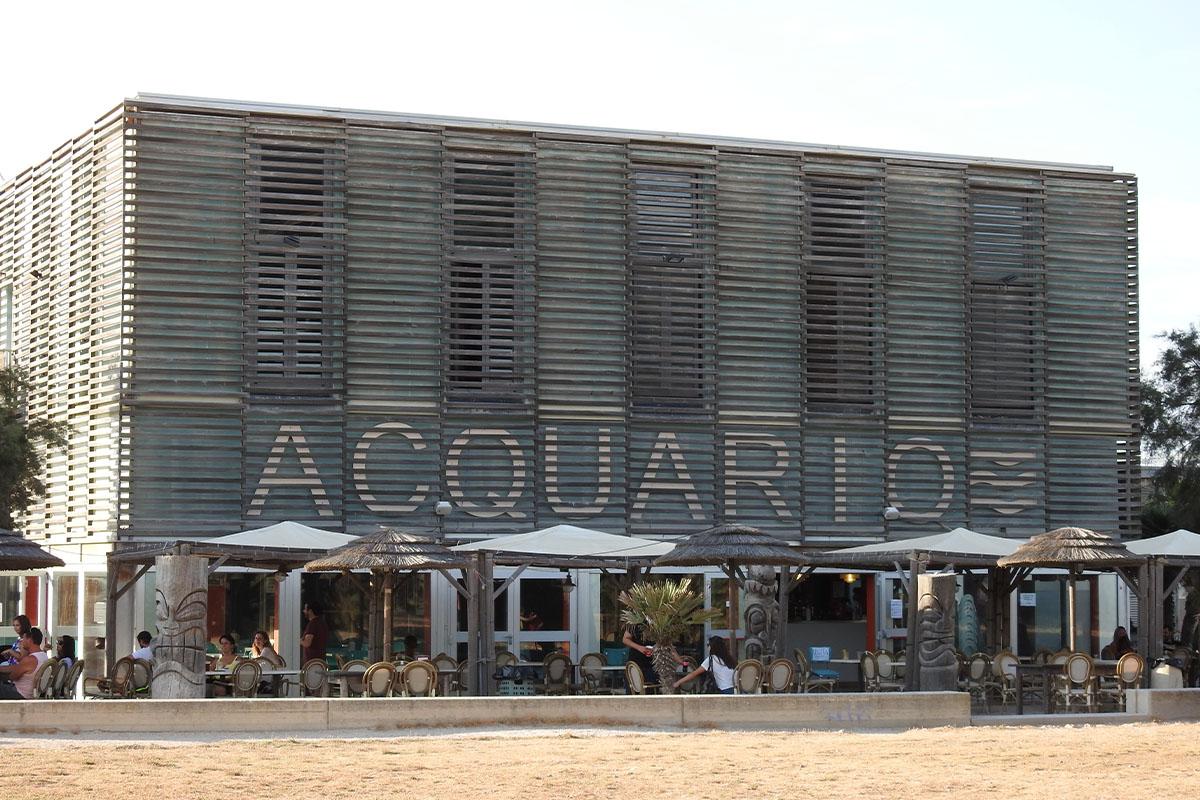 Alla scoperta di Livorno: acquario