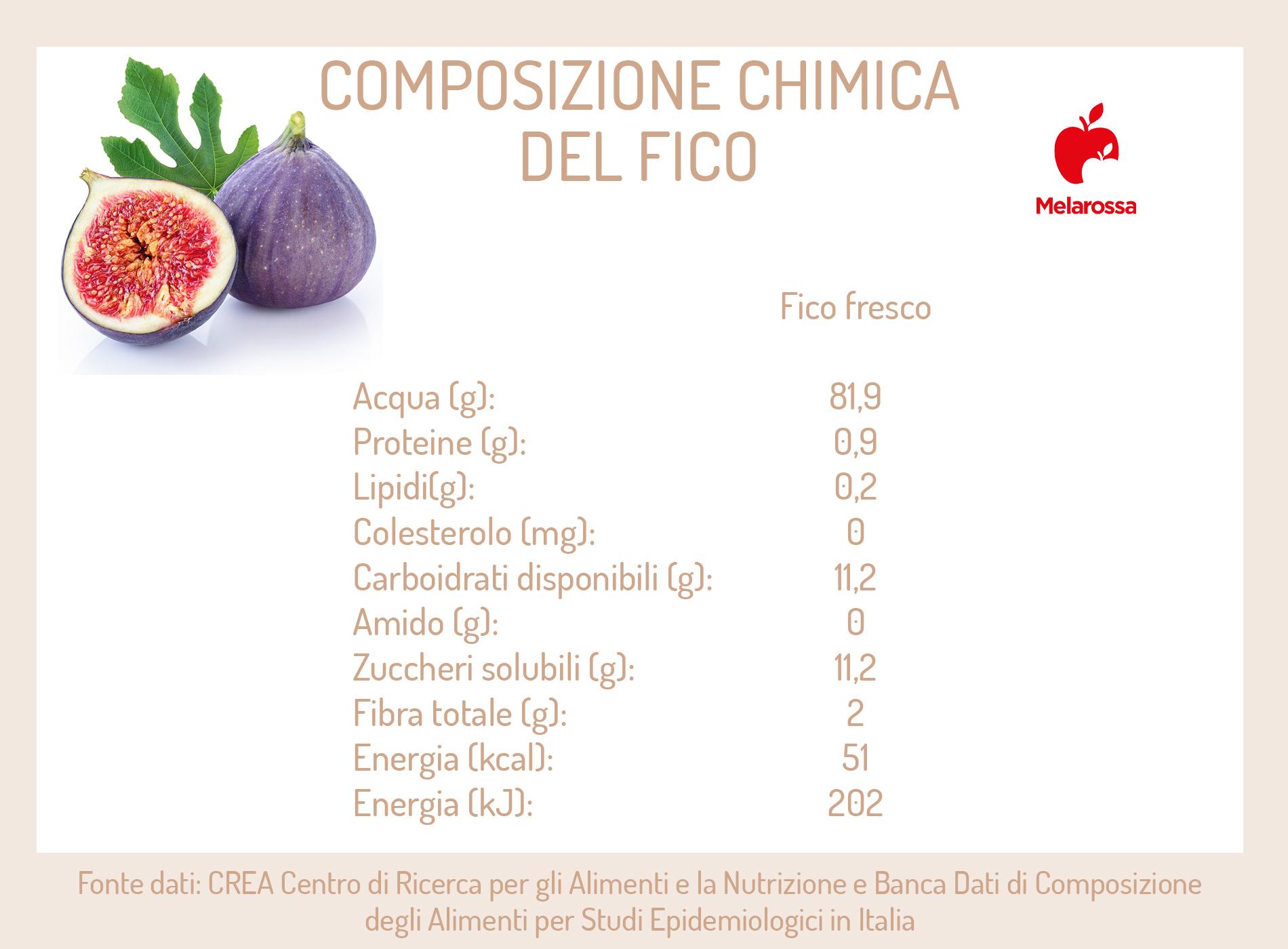 composizione chimica del fico-