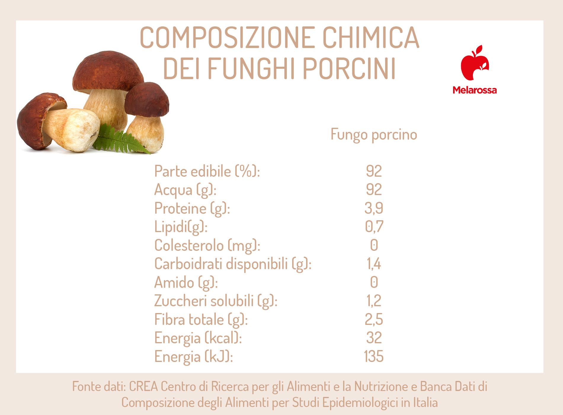 funghi porcini: calorie