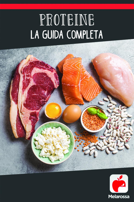 Proteine: la guida completa