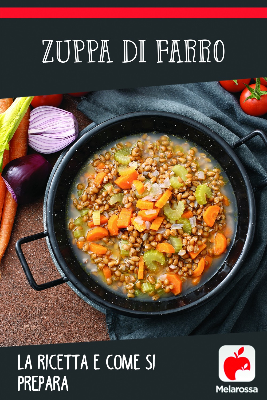zuppa di farro: ricetta e come si prepara