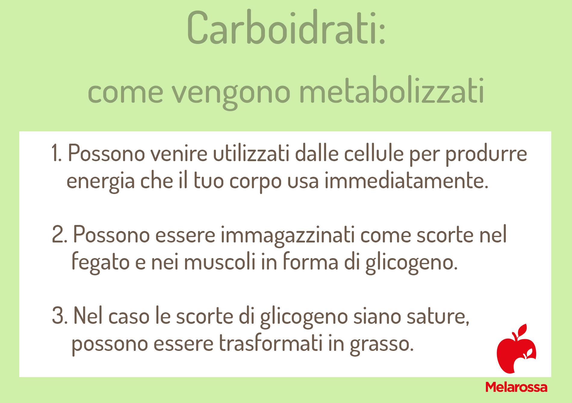 Tabella sui processi di metabolizzazione dei carboidrati